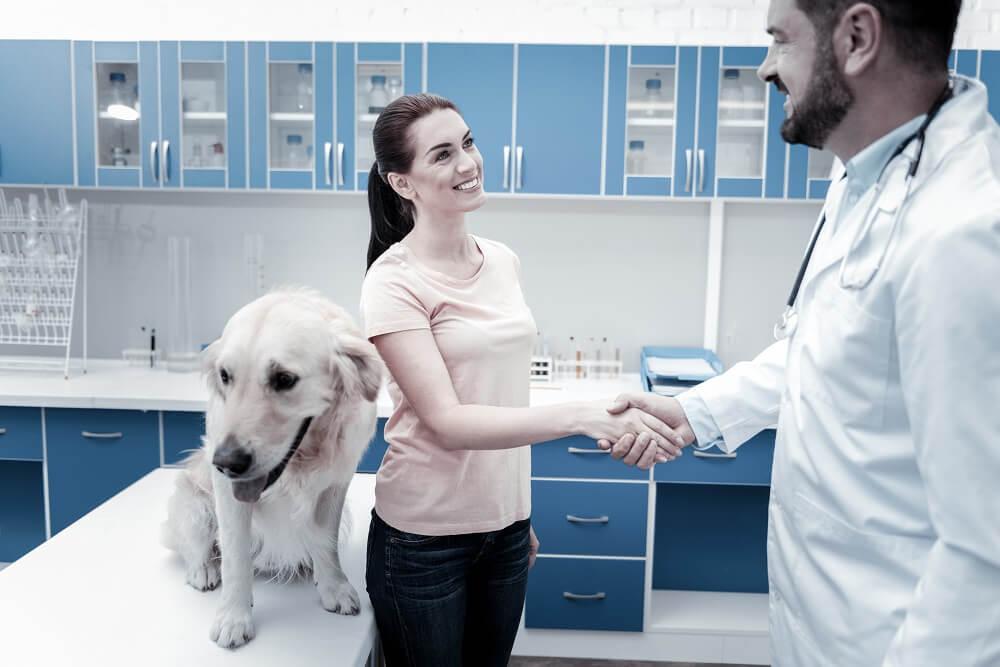 Συμβουλές marketing για κτηνιάτρους