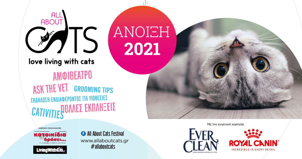 All About Cats: Άνοιξη 2021
