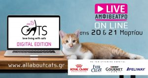 All About Cats Digital Edition
